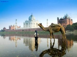The Yamuna river passing through the Taj Mahal in Agra (India)