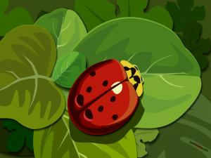 Painted ladybug