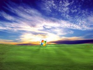 Windows logo on a grass field at dawn