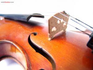 The violin cords