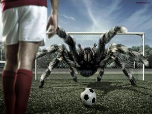 This goalkeeper... is a spider