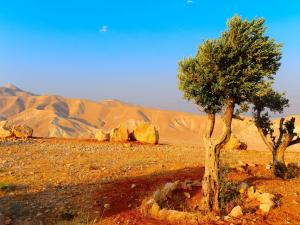 Judean Mountains, near the Dead Sea, Jerusalem