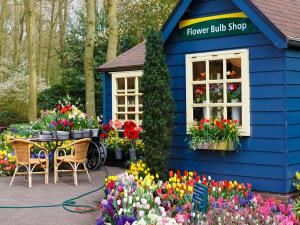 Flower shop near the forest