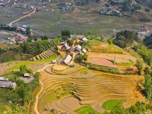 Rice terraces in Ta Van (Vietnam)