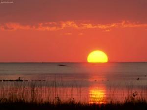 The Sun over the horizon of the sea