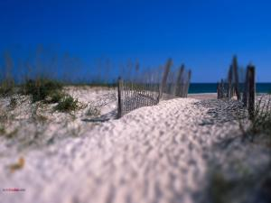 Road of white sand to the beach