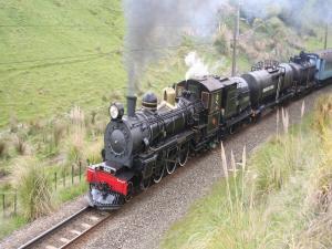 Steam locomotive crossing a field