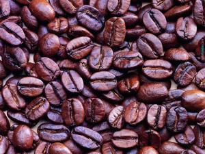 Roasted coffee seeds