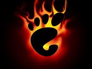 GNOME burning