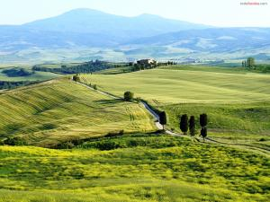 Green fields in Tuscany, Italy