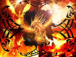 The resurgence of the Phoenix