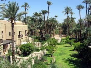 Palm Grove in Marrakech (Morocco)
