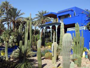 Majorelle Garden (Marrakech, Morocco)