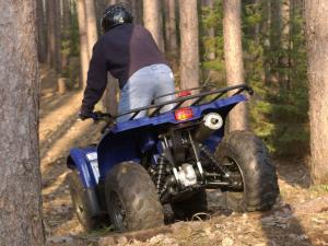 With a Yamaha Kodiak through the woods