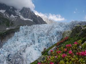 Eternal ices