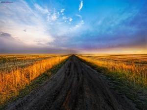 Black ground road