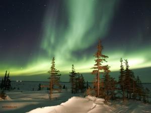 The Aurora Borealis on a frozen landscape