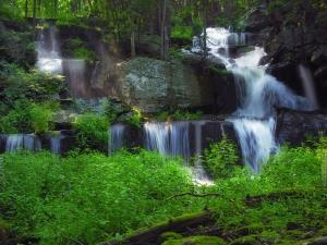 Waterfalls falling over the stone in a lush green forest