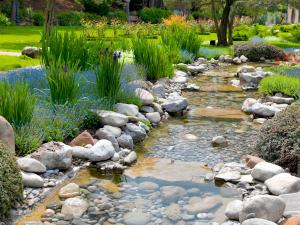 A small river in the garden