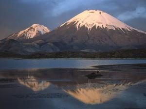 Parinacota Volcano and Chungará Lake, on the border of Chile and Bolivia