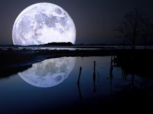 The moon reflected in water