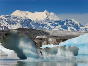 Lowell Glacier, Alsek River (British Columbia - Alaska)