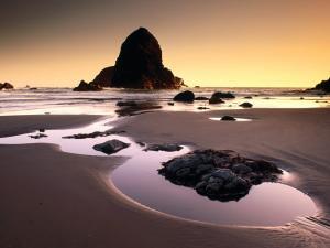 A beach in Oregon State, United States