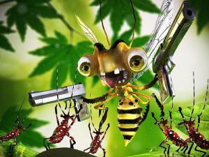 A bully wasp