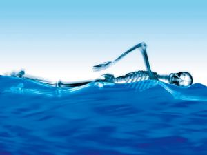 Skeleton swimming