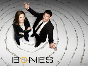 "Protagonists of the television series ""Bones"""