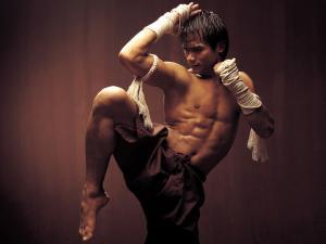Muay Thai, thai martial art