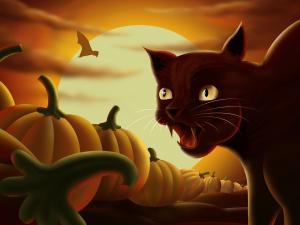 Cat among pumpkins on Halloween night
