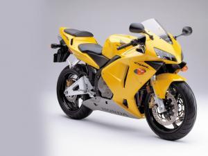 Honda CBR 600 yellow