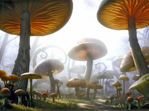 "Path surrounded by giant mushrooms in ""Alice in Wonderland"" by Tim Burton"