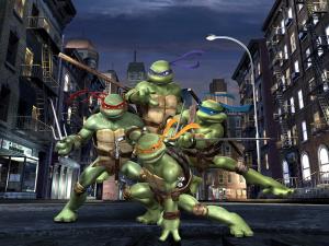 The Teenage Mutant Ninja Turtles (TMNT)