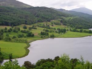 Natural pastures for livestock