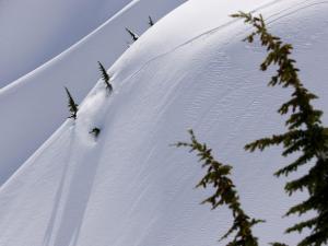 Snowboarding in virgin snow