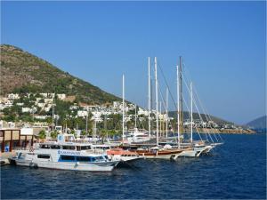 Bodrum Port (Turkey)