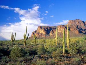 Superstition Mountains (Arizona)
