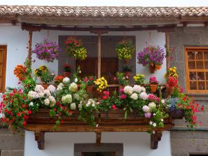 Andalusian balcony filled of potted with flowers (Spain)