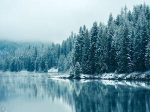 Kootenay River (British Columbia)