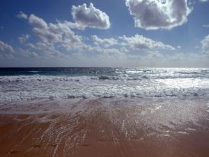 Wet sand of the beach