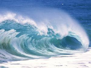 The curl of a wave