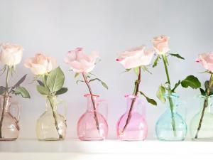 Roses in little vases