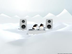 Dj's Penguins