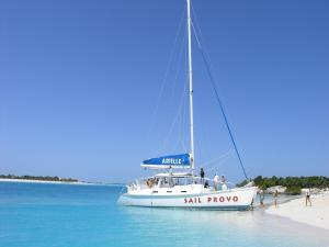 A sailboat on the beach