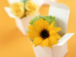 Boxes with yellow flowers for gift