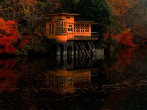 Orange floating house built on the shore of a lake