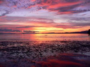 The sunrise over a lake