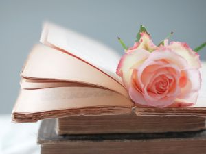 Old books and a rose